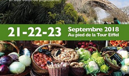 Village international de la Gastronomie et des cuisines populaires le premier festival international Food et..