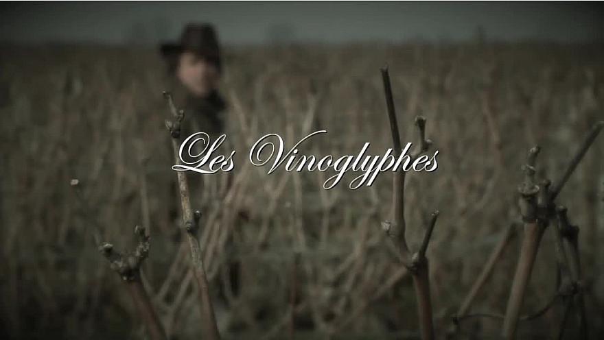 Les Vinoglyphes de François Maurisse, plasticien de notre mère nature et designer en haute couture végétale...